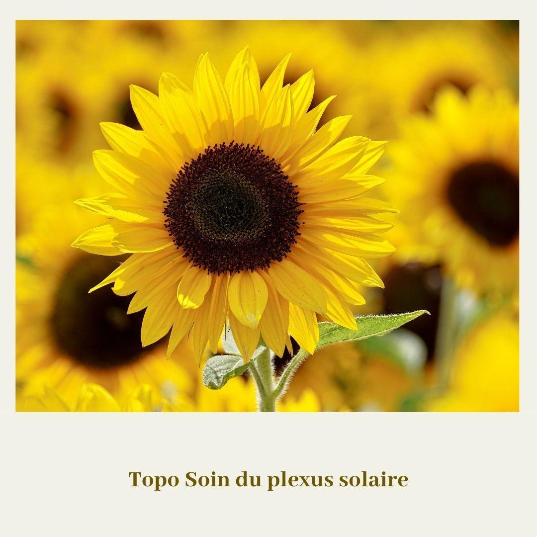 Topo soin du plexus solaire 2